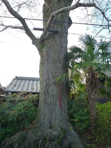 穴太寺 006-1