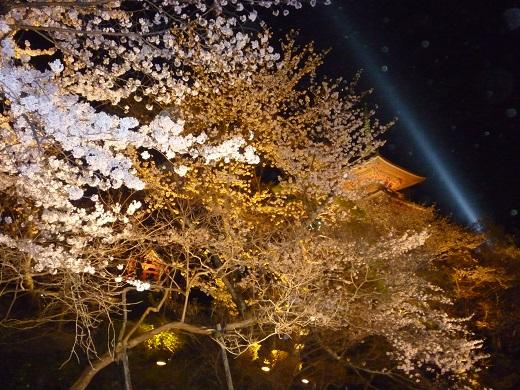 清水寺・夜桜・2013.04.01