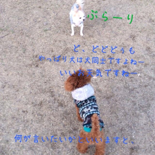 写真 2-1