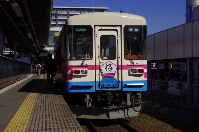 IMGP5343-1.jpg