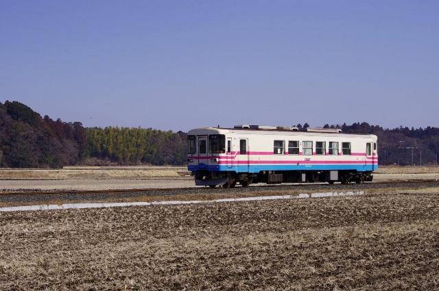 IMGP5412-1.jpg