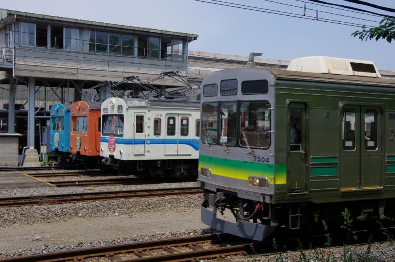 IMGP5995.jpg
