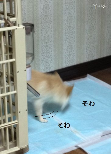 7_20121226161001.jpg