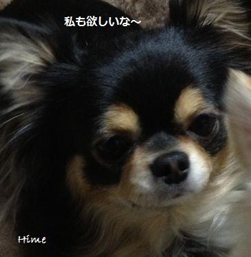 b5_20130118182500.jpg