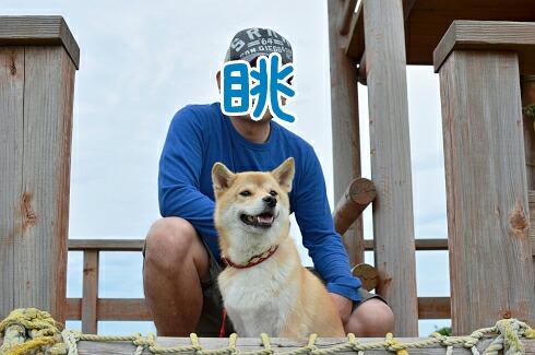nagameru_20120928113429.jpg