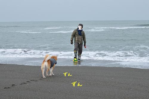 zunzun_s_20121222111548.jpg