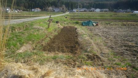 苗床の用意