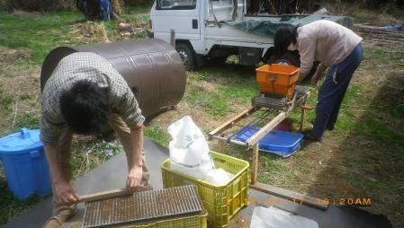 稲の播種作業 (5)
