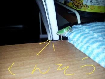 fc2blog_20120714172214d2a.jpg