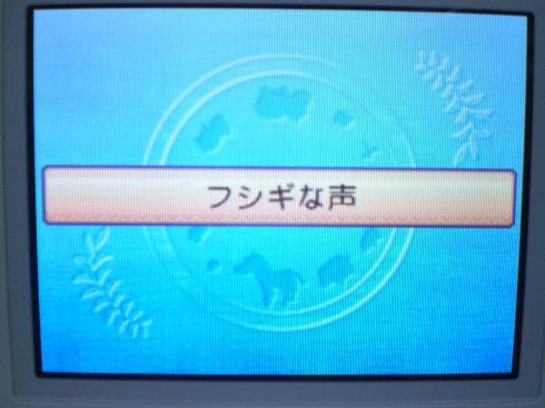 CIMG4326_convert_20120822230724.jpg
