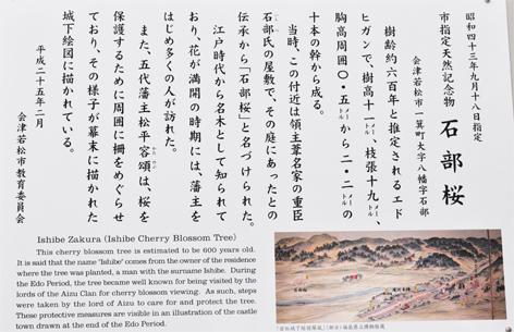 石部桜 歴史
