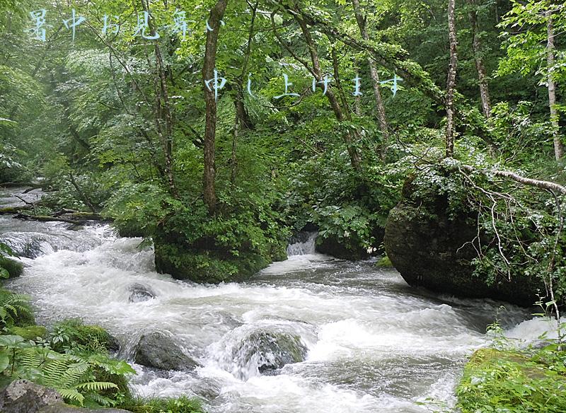 2012natu-goaisatu