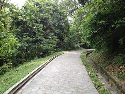 TTDIpark3.jpg