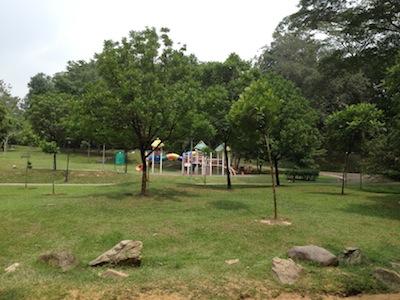 TTDIpark4.jpg