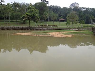 TTDIpark5.jpg