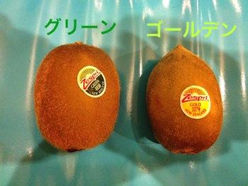 kiwi1.jpg