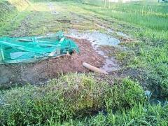 20130620 池 排水側