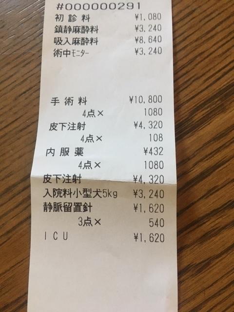 2114.11.05.akiresu