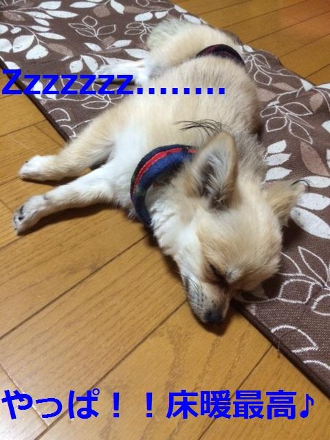 床暖最高!!!