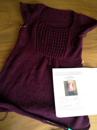 130604caviar dress