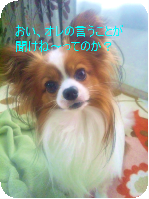 120514_101035.png