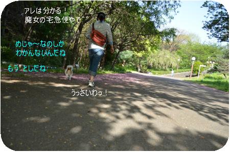 DSC_6990.png