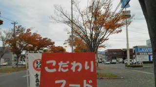 1_20121105114726.jpg