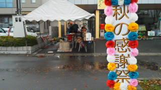 5_20121112135556.jpg