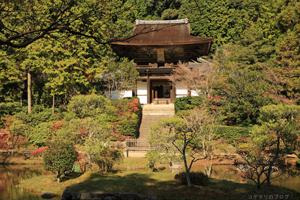 円成寺の紅葉
