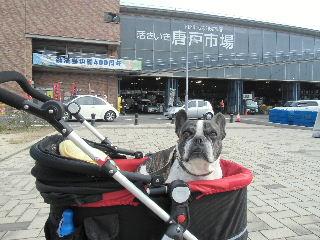2012_11242012筑後川温泉11230001
