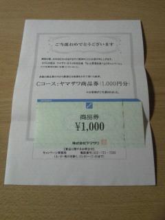NEC_0093_201410121454124bb.jpg