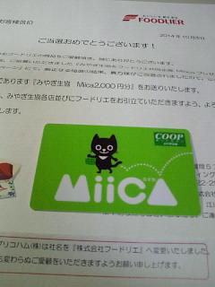 NEC_0118_20141105172923a41.jpg