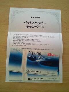 NEC_0146_20141208190550b51.jpg