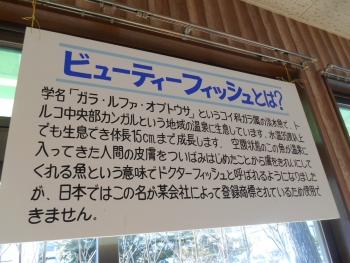 2014_0125s0119.jpg