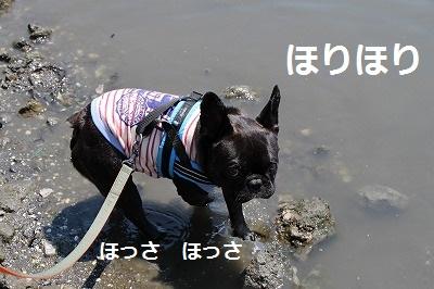 s-25IMG_7015.jpg