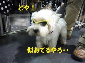 DSCF10981blog.jpg