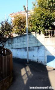 八幡神社(あきる野市草花)1