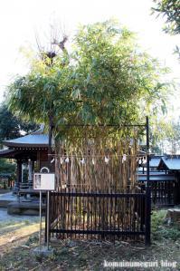 二宮神社(あきる野市二宮)15