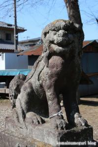 鷲宮神社(さいたま市岩槻区末田)14