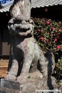 鷲宮神社(さいたま市岩槻区末田)10