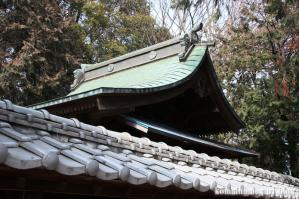 飯塚神社(さいたま市岩槻区飯塚)9