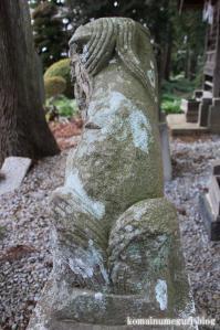 飯塚神社(さいたま市岩槻区飯塚)18