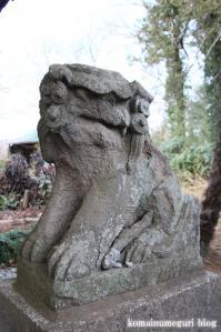 飯塚神社(さいたま市岩槻区飯塚)16
