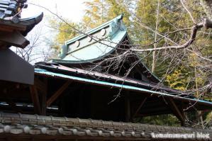 久伊豆神社(さいたま市岩槻区村国)7