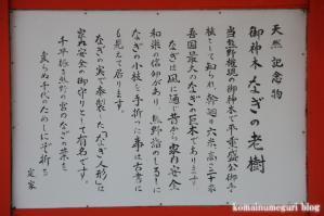 熊野速玉大社15
