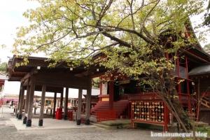 鶴岡八幡宮(鎌倉市雪ノ下)43