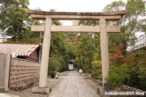 鶴岡八幡宮(鎌倉市雪ノ下)49