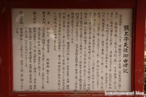鶴岡八幡宮(鎌倉市雪ノ下)55