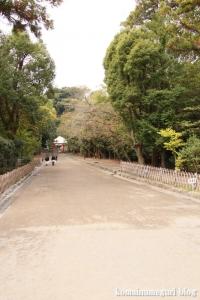 鶴岡八幡宮(鎌倉市雪ノ下)53