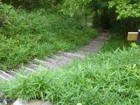 1234段の急坂の長い階段 歴史広場P~直線で山頂広場へ
